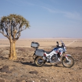 51430-20ym-africatwin-l4-location-3726-original
